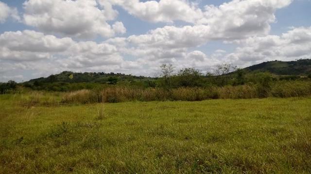 Propriedade de 7 hectares, escriturada, em Dois Leões-PE! - Foto 8