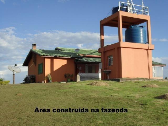 Fazenda com tudo (Casas, lagos, heliporto etc) - Foto 6
