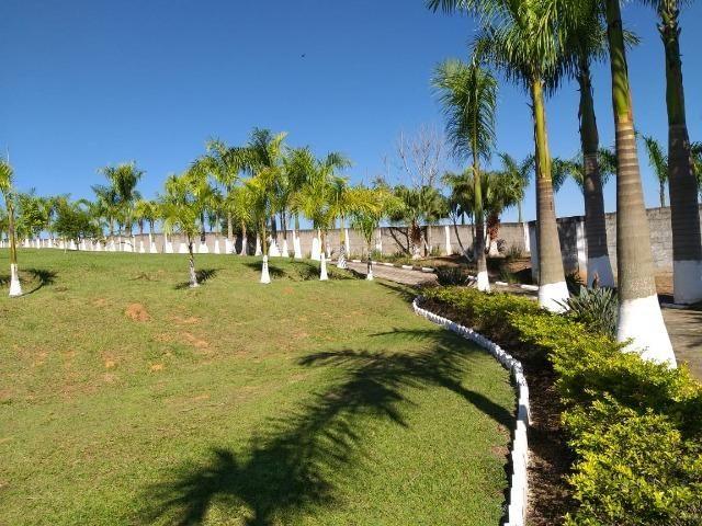Fazenda com tudo (Casas, lagos, heliporto etc) - Foto 7