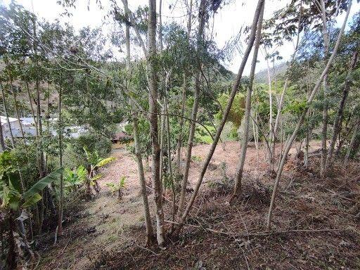 Terreno à venda em Vargem grande, Teresópolis cod:TE0036 - Foto 13