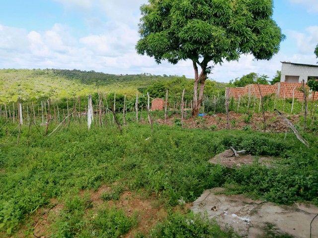 Oportunidade - Casa em Itamaracá - Água potável - Quintal - Ventilada -  - Foto 10