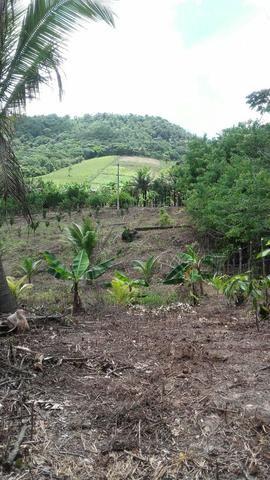 Sítio dos sonhos seu pedaço do Paraíso com 7 hectares por 150 mil