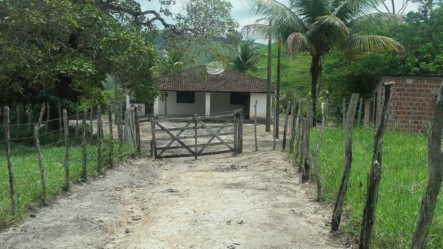 Linda Fazenda em Joaquim Gomes 60 hectares apenas 750 mil - Foto 4