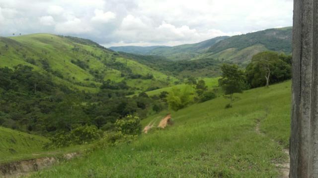 Linda Fazenda em Joaquim Gomes 60 hectares apenas 750 mil - Foto 18