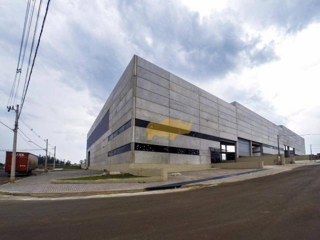 Barracão novo no corporate park