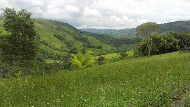Linda Fazenda em Joaquim Gomes 60 hectares apenas 750 mil - Foto 5