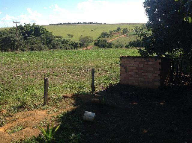 Chácara 3 alqueires e 75 litros,curral,represa,casa,3 alqueires arrendado para planta. - Foto 16