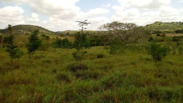 Propriedade de 7 hectares, escriturada, em Dois Leões-PE! - Foto 11