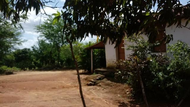 Propriedade de 7 hectares, escriturada, em Dois Leões-PE! - Foto 2