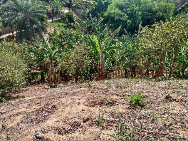 Sítio com 22.000 m2 plantação de banana e outros frutos - Foto 13