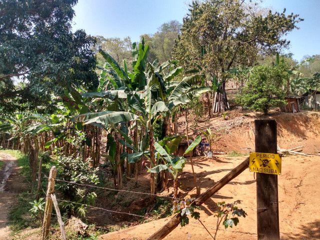 Sítio com 22.000 m2 plantação de banana e outros frutos - Foto 12