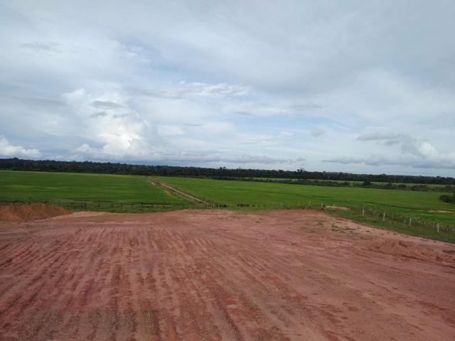 Vendo Fazenda Rondônia - Foto 2