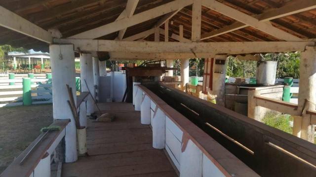 Vendo Fazenda Rondônia - Foto 17