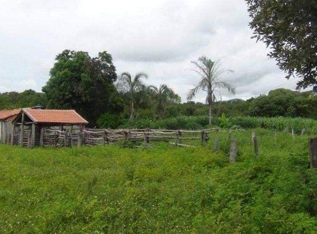 Compra de terra; sítios, chácara e fazenda.
