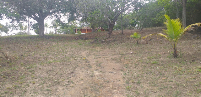 Vendo sítio,  LOT ELDORADO,  GOIANA PE,  CAMINHO de pontas de pedra .