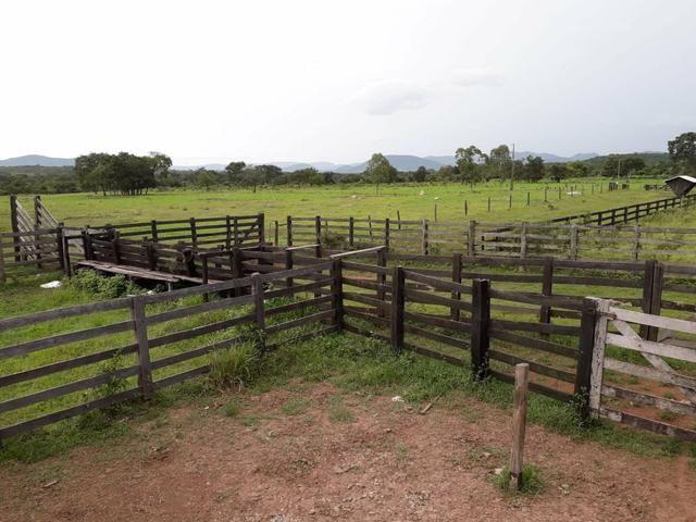 Sitio proximo de cuiabá a 105km, sentido Rondonópolis, Agrovila das palmeiras - Foto 2