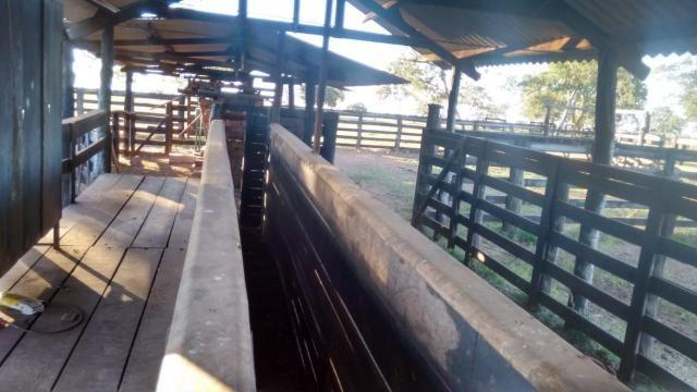 8271   fazenda à venda em pontal do araguaia - Foto 5