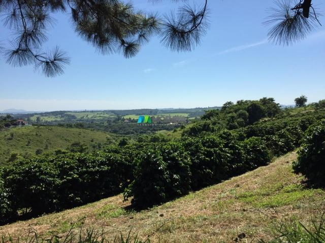 Fazenda à venda - 80 hectares - lavras (mg) - Foto 15