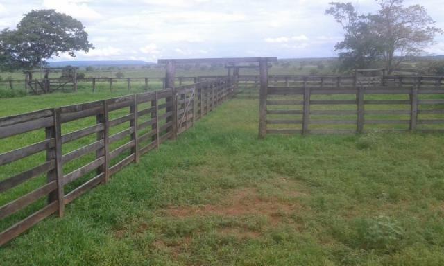 8271   fazenda à venda em pontal do araguaia - Foto 7