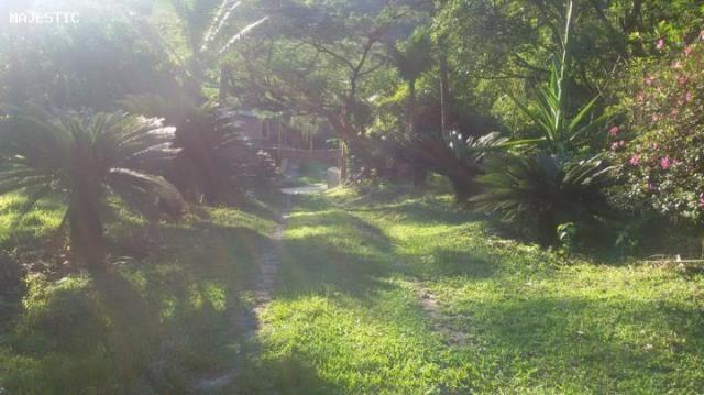 Sítio para venda em cachoeiras de macacu, faraó, 3 dormitórios, 1 banheiro, 10 vagas - Foto 2