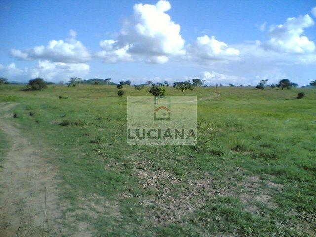 Fazenda com 467 hectares em Limoeiro (Cód.: 103m57) - Foto 9