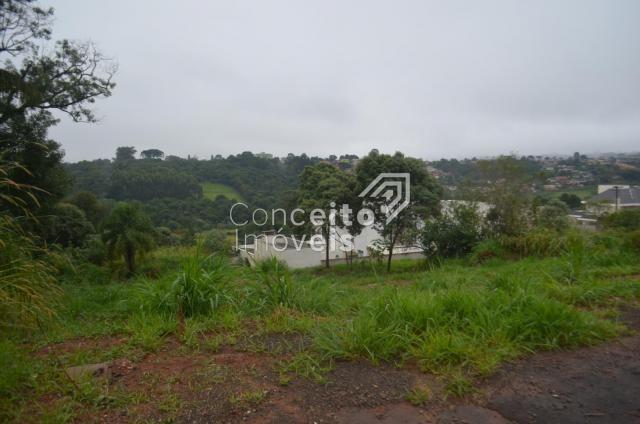Terreno à venda em Estrela, Ponta grossa cod:391713.001 - Foto 6