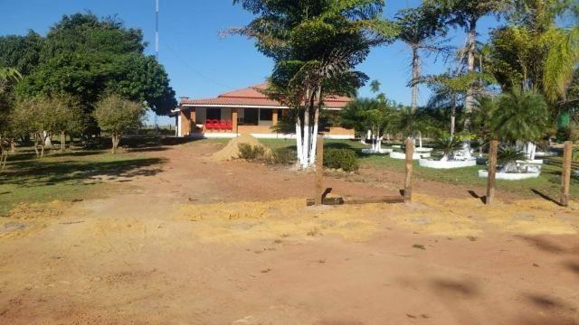 Vendo Fazenda Rondônia - Foto 18