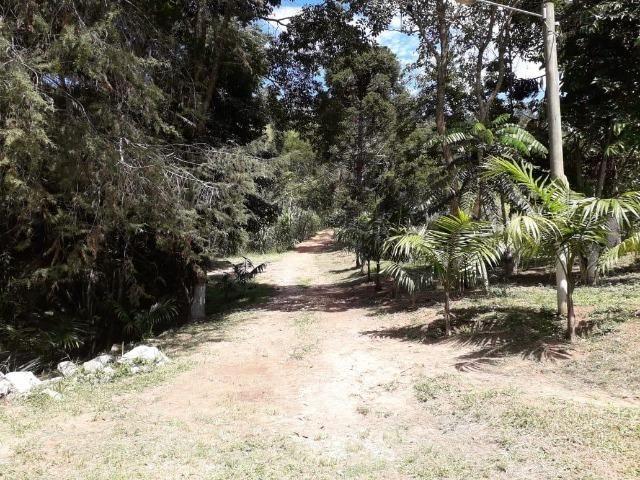 Fazenda em Redenção da serra - Foto 2