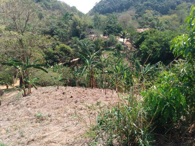 Sítio com 22.000 m2 plantação de banana e outros frutos - Foto 16