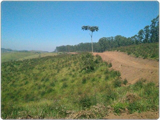 (LC1)Vendo meu terreno - Foto 7