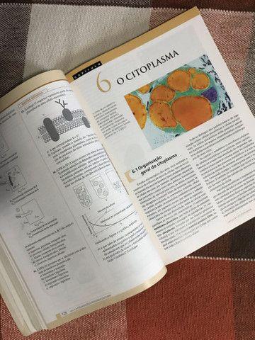 Livro de Biologia - Amabis e Martho - Foto 3