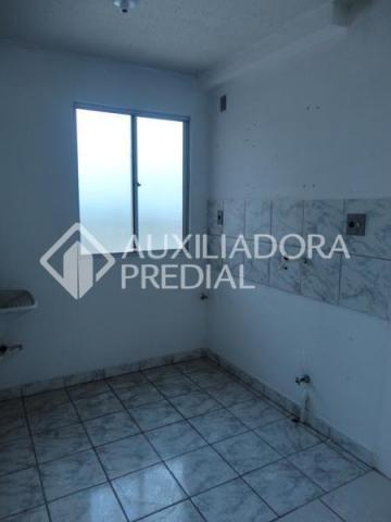 Apartamento para alugar com 2 dormitórios em Canudos, Novo hamburgo cod:244137 - Foto 11