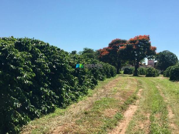 Fazenda à venda - 80 hectares - lavras (mg) - Foto 4