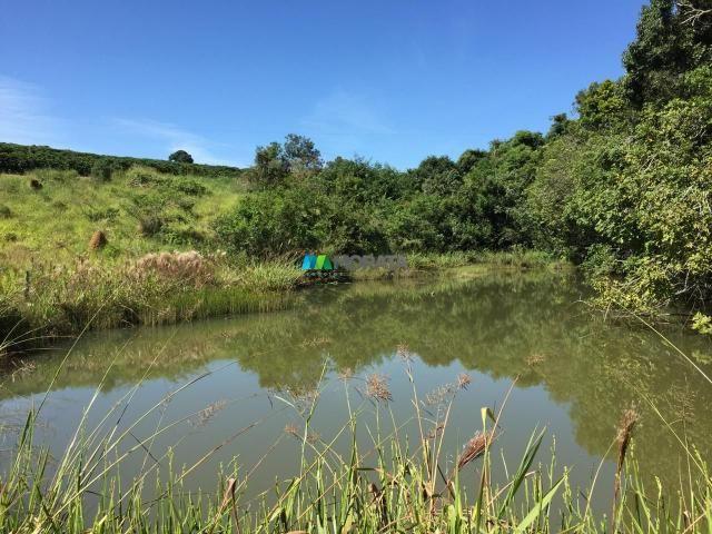 Fazenda à venda - 80 hectares - lavras (mg) - Foto 11