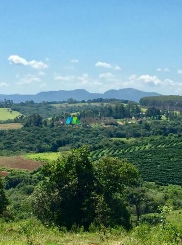 Fazenda à venda - 80 hectares - lavras (mg) - Foto 16