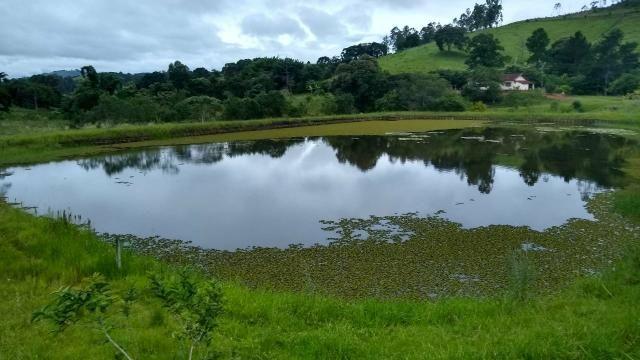 Sitio 20 alqueires com 5 lagos a venda em socorro sp - Foto 5