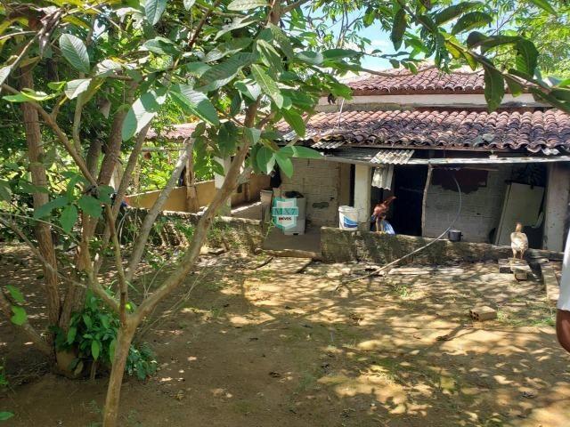 Ibirapitanga. Fazenda pequena com área de 12 ha - Foto 6