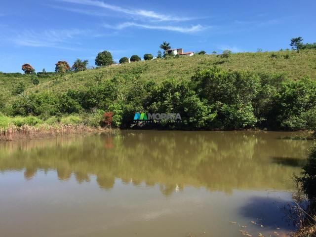 Fazenda à venda - 80 hectares - lavras (mg) - Foto 3