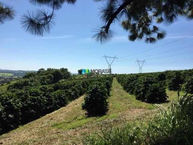 Fazenda à venda - 80 hectares - lavras (mg) - Foto 2