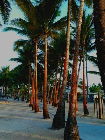 3 vilages no condomínio Lagoa Dourada ao lado do Club Med - Foto 15