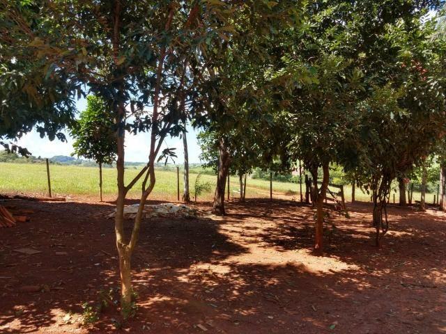 Chácara de lazer Carmo do Rio Verde - Foto 11