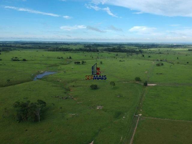 Fazenda à venda, por R$ 4.340.000 - Centro - Seringueiras/RO - Foto 16