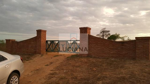 Fazenda com 467 hectares em Limoeiro (Cód.: 103m57) - Foto 12
