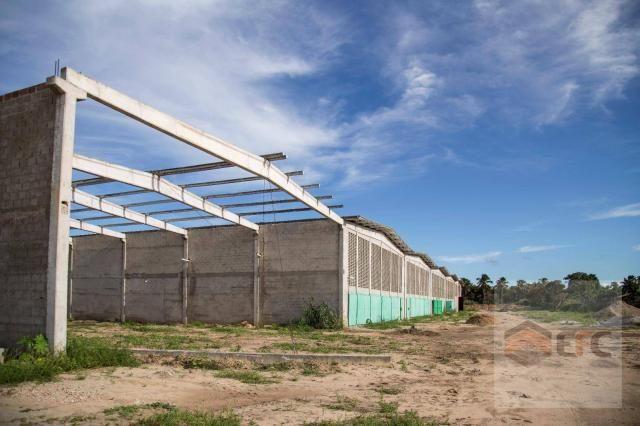 Galpão para alugar, 1400 m² por R$ 25.200,00/mês - Emaús - Parnamirim/RN - Foto 14