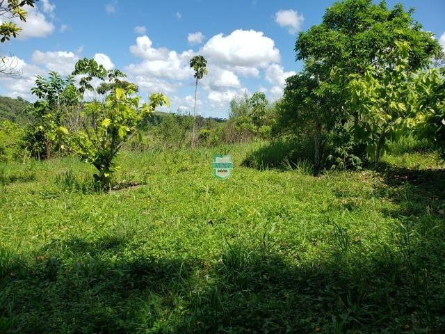 Ibirapitanga. Fazenda pequena com área de 12 ha - Foto 13