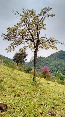 Fazenda com 313 ha região da serra de são vicente - Foto 11