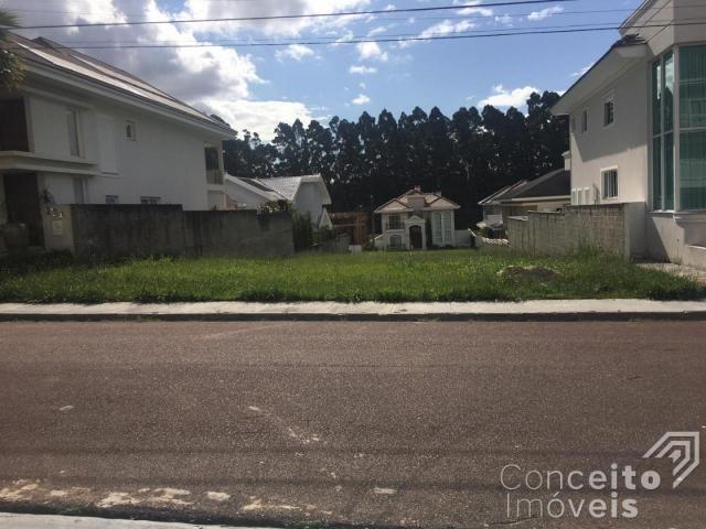Loteamento/condomínio à venda em Orfãs, Ponta grossa cod:392294.001 - Foto 4