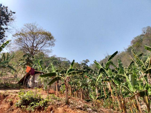 Sítio com 22.000 m2 plantação de banana e outros frutos - Foto 8
