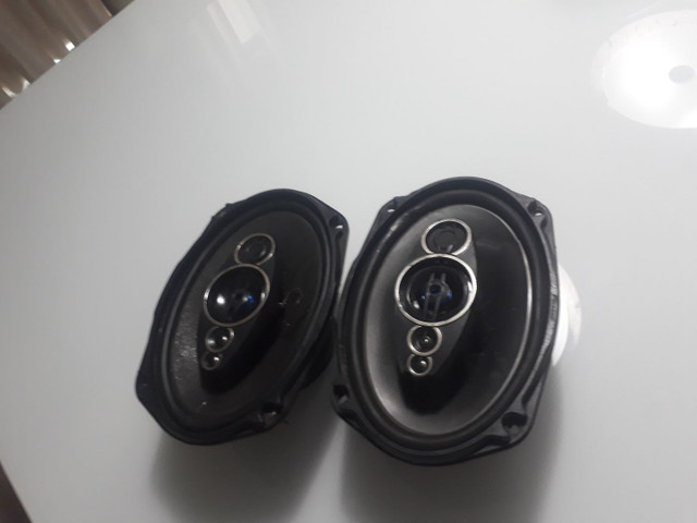 Triquicial Pioneer 600 RMS