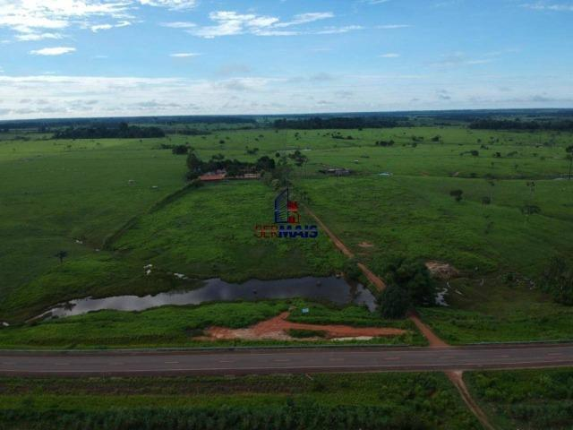 Fazenda à venda, por R$ 4.340.000 - Centro - Seringueiras/RO - Foto 4